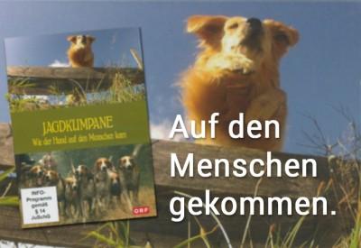 Jagdkumpane_Hund_Mensch