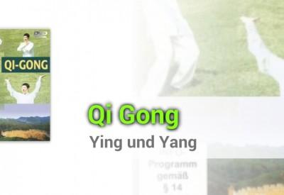 qi-ong-ying-und-yang