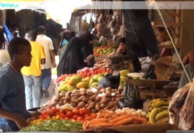 Lamu_ Kenia - Reisebericht