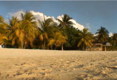 DVD Jamaika - Bonusfilm Trinadad