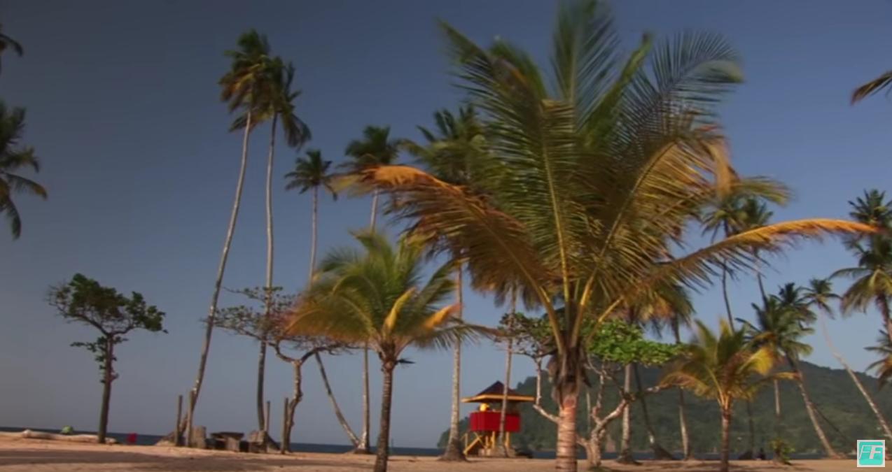 KARIBIK - Tobago, Trinidad & Jamaica - Reisebericht