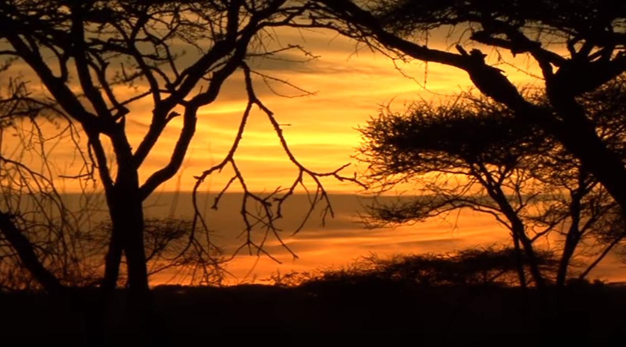 Afrika Highlights1